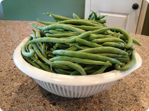 csa beans